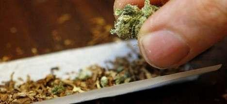 Cannabis-1728x800_c