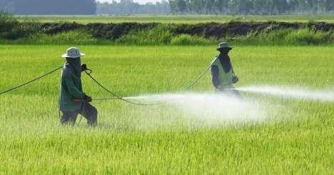 pesticidi-campi