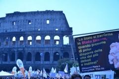 Marcia per la Vita - Roma 13 maggio 2012 - parte 5